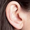 Прыщи на ушах